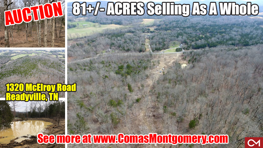 McElroy, Road, Readyville, Tennessee, Acres, Land, For Sale, Auction, Rutherford, County, Comas, Montgomery