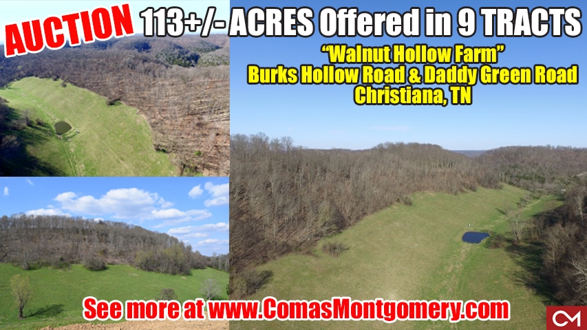 Auction, Farm, Land, Tracts, Acres, Investment, Property, Christiana, Comas, Montgomery, Murfreesboro, Tennessee, Real Estate