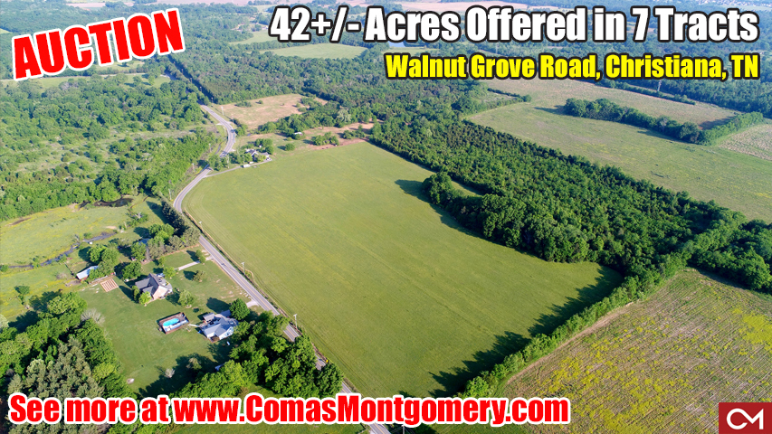 Land, For Sale, Tracts, Acres, Christiana, Tennessee, Auction, Real Estate, Investment, Build, New, Home, House, Houses, Homes, Development, Farm, Farmland, Murfreesboro, Rutherford, Walnut, Grove, Soil Site, Utilities