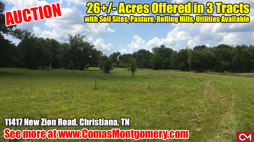 Land, Auction, For Sale, Property, Investment, New Zion, Christiana, Tennessee, Build, Home, House, Comas, Montgomery, Murfreesboro, Nashville