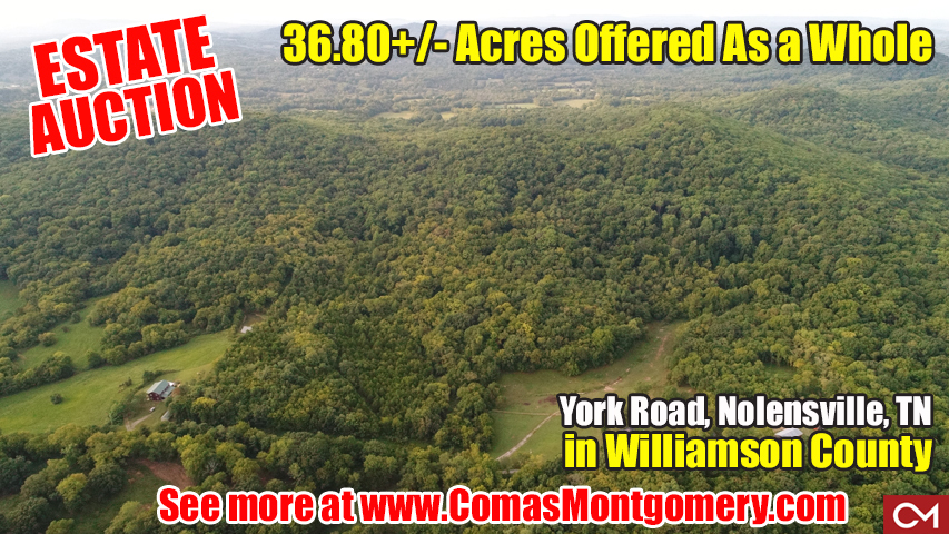 land, for sale, williamson, county, nolensville, tennessee, york, road, comas, montgomery, estate, auction, build, develop, invest, farm, acres