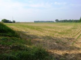 71.82 +/- Acres in Gibson County featured photo 3