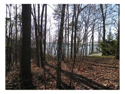 Court Ordered Auction!<br>7 Lake Lots/1 Agricultural<br>ABSOLUTE! featured photo