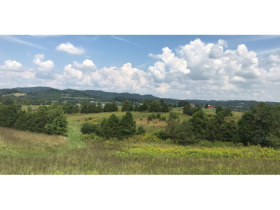 243 Acres- Beaver Creek Road, Bluff City, TN featured photo 1