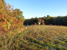 200' X 50' Shop, Mobile home on 14.5 Acres - Offered in 3 Tracts or as a Whole! featured photo 12
