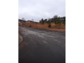 Residential Bldg. Lots at Absolute Online Auction  featured photo 1