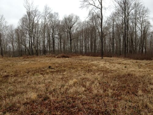 Meigs County Online Only Mineral & Land Auction featured photo