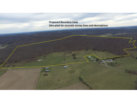 276+/- Acre Farm in Tracts at Absolute Multi-Par Auction  featured photo 1