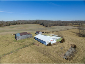 Harrison County 19 +/- Acre Land Online Only Auction  featured photo 8