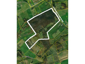 Absolute Auction - 155 Acre Farm- Meadowview, VA featured photo 1