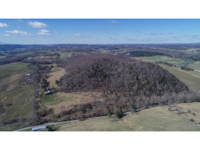 Absolute Auction - 155 Acre Farm- Meadowview, VA featured photo 3