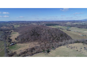 Absolute Auction - 155 Acre Farm- Meadowview, VA featured photo 4