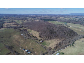 Absolute Auction - 155 Acre Farm- Meadowview, VA featured photo 5