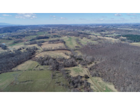 Absolute Auction - 155 Acre Farm- Meadowview, VA featured photo 6