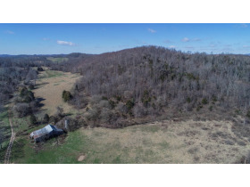 Absolute Auction - 155 Acre Farm- Meadowview, VA featured photo 8
