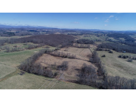 Absolute Auction - 155 Acre Farm- Meadowview, VA featured photo 9