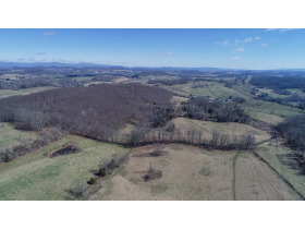 Absolute Auction - 155 Acre Farm- Meadowview, VA featured photo 10