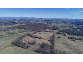 Absolute Auction - 155 Acre Farm- Meadowview, VA featured photo 11