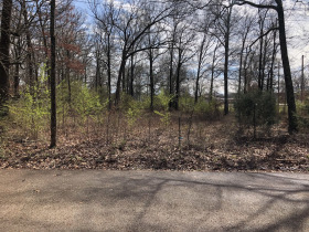 1.14± Acres Nash Drive, Grenada, MS  featured photo 3
