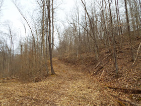 Absolute Ritchie Co. WV Land featured photo 9