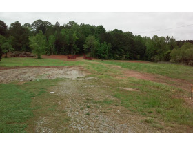 House & 38 Acres± In 3 Tracts (Cullman County) featured photo 6