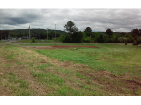 House & 38 Acres± In 3 Tracts (Cullman County) featured photo 7