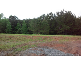House & 38 Acres± In 3 Tracts (Cullman County) featured photo 8