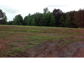 House & 38 Acres± In 3 Tracts (Cullman County) featured photo 9