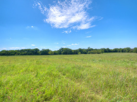 ORTEZ ESTATE AUCTION-GLENCOE, OKLAHOMA REAL ESTATE AUCTION -HOME and 78 +/- Acres PLUS Personal Property featured photo 8