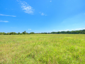 ORTEZ ESTATE AUCTION-GLENCOE, OKLAHOMA REAL ESTATE AUCTION -HOME and 78 +/- Acres PLUS Personal Property featured photo 9