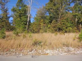 Residential Lots In Deer Run Subdivision, Phase II - Near Lake Guntersville featured photo 1