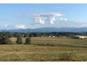106 Acres in Ten Tracts - Telford, TN featured photo 1