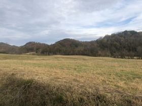 Absolute Auction - 155 Acres - Greeneville, TN featured photo 1