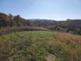 The Ben Cusick Farm: 90 Acre Sevier County Estate in 9 Tracts featured photo 8