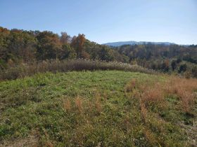 The Ben Cusick Farm: 90 Acre Sevier County Estate in 9 Tracts featured photo 9