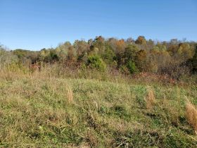 The Ben Cusick Farm: 90 Acre Sevier County Estate in 9 Tracts featured photo 10