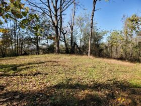 The Ben Cusick Farm: 90 Acre Sevier County Estate in 9 Tracts featured photo 6