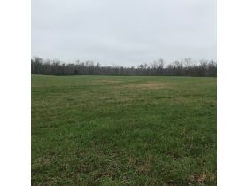 COURT ORDERED AUCTION: Wilson Estate, 39± ACRES featured photo 1