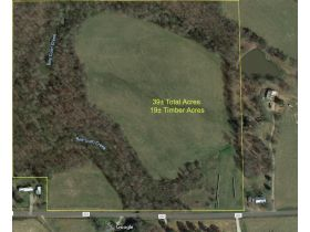 COURT ORDERED AUCTION: Wilson Estate, 39± ACRES featured photo 7