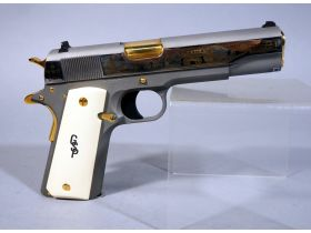 Safety And Security- Essential Firearm Auction featured photo 4