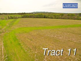Tract 11 view 12 Acres
