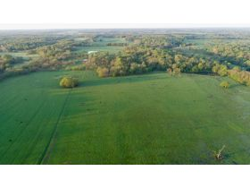220 Ac. +/- In Beautiful Southwest Missouri - Pasture & Timber With Several Buildings, Being Offered In Three Tracts & Sells With No Reserve or Minimum featured photo 12
