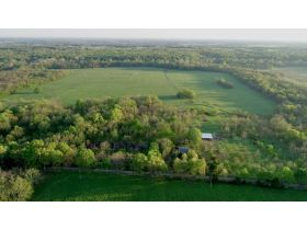 220 Ac. +/- In Beautiful Southwest Missouri - Pasture & Timber With Several Buildings, Being Offered In Three Tracts & Sells With No Reserve or Minimum featured photo 4