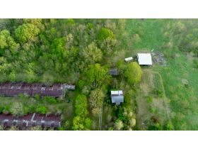 220 Ac. +/- In Beautiful Southwest Missouri - Pasture & Timber With Several Buildings, Being Offered In Three Tracts & Sells With No Reserve or Minimum featured photo 5