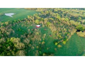 220 Ac. +/- In Beautiful Southwest Missouri - Pasture & Timber With Several Buildings, Being Offered In Three Tracts & Sells With No Reserve or Minimum featured photo 10