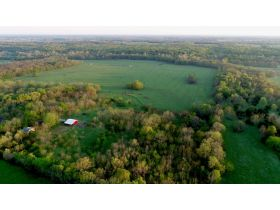 220 Ac. +/- In Beautiful Southwest Missouri - Pasture & Timber With Several Buildings, Being Offered In Three Tracts & Sells With No Reserve or Minimum featured photo 8