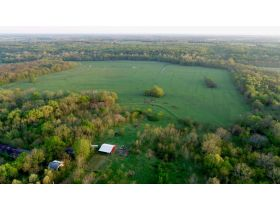 220 Ac. +/- In Beautiful Southwest Missouri - Pasture & Timber With Several Buildings, Being Offered In Three Tracts & Sells With No Reserve or Minimum featured photo 7