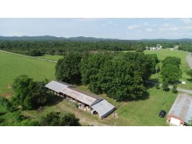 AUCTION featuring 3 BR, 3.5 BA Brick Home + Outbuildings on 30+/- Acres - Offered in Tracts featured photo 8