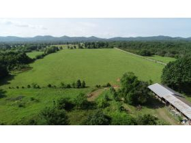 AUCTION featuring 3 BR, 3.5 BA Brick Home + Outbuildings on 30+/- Acres - Offered in Tracts featured photo 9
