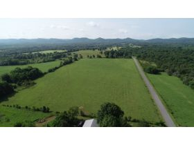 AUCTION featuring 3 BR, 3.5 BA Brick Home + Outbuildings on 30+/- Acres - Offered in Tracts featured photo 10